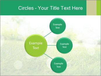 Spring Mood PowerPoint Template - Slide 79
