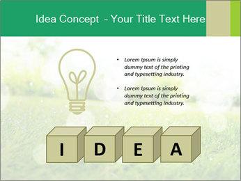 Spring Mood PowerPoint Template - Slide 80