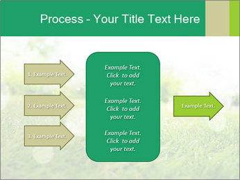 Spring Mood PowerPoint Template - Slide 85