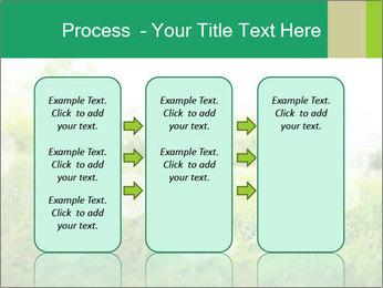 Spring Mood PowerPoint Template - Slide 86