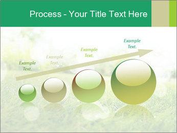 Spring Mood PowerPoint Template - Slide 87