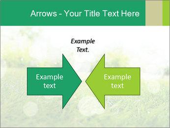 Spring Mood PowerPoint Template - Slide 90