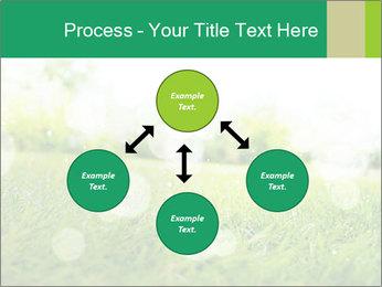 Spring Mood PowerPoint Template - Slide 91
