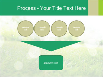 Spring Mood PowerPoint Template - Slide 93