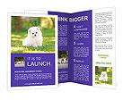 0000089791 Brochure Templates
