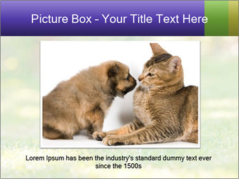 White Little Puppy PowerPoint Template - Slide 16
