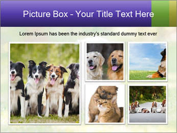 White Little Puppy PowerPoint Template - Slide 19