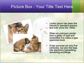 White Little Puppy PowerPoint Template - Slide 20