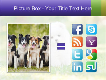 White Little Puppy PowerPoint Template - Slide 21