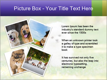 White Little Puppy PowerPoint Template - Slide 23
