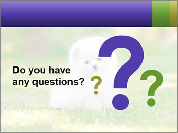 White Little Puppy PowerPoint Template - Slide 96