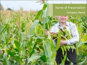 Man And Sweetcorn PowerPoint Template