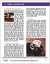 0000089804 Word Template - Page 3