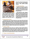 0000089804 Word Template - Page 4