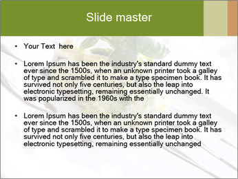 Vegan Salad PowerPoint Template - Slide 2