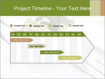 Vegan Salad PowerPoint Template - Slide 25