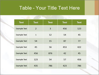 Vegan Salad PowerPoint Template - Slide 55