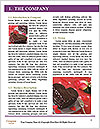 0000089816 Word Template - Page 3