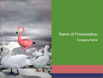 It is special PowerPoint Template - Slide 1