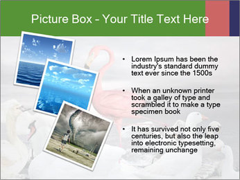 It is special PowerPoint Template - Slide 17