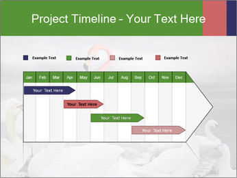 It is special PowerPoint Template - Slide 25