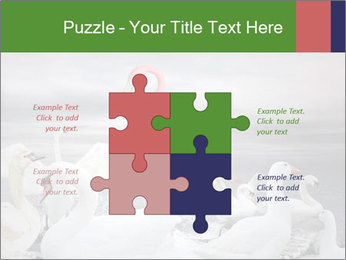 It is special PowerPoint Template - Slide 43