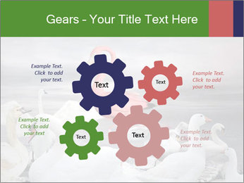 It is special PowerPoint Template - Slide 47