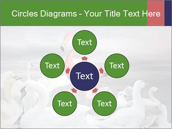It is special PowerPoint Template - Slide 78