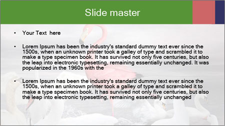 It is special PowerPoint Template - Slide 2