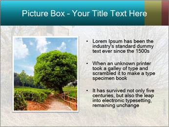 Hunt Seat PowerPoint Template - Slide 13