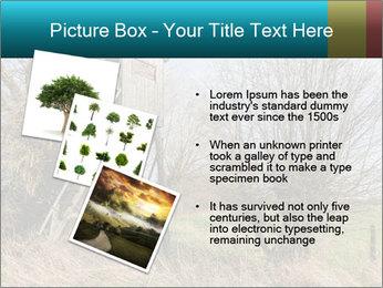 Hunt Seat PowerPoint Template - Slide 17