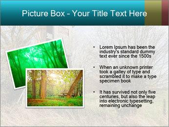 Hunt Seat PowerPoint Template - Slide 20