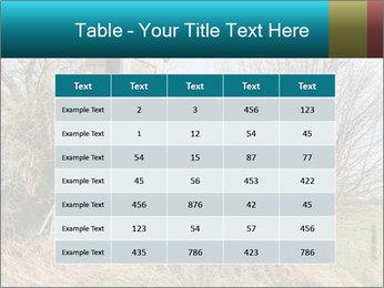 Hunt Seat PowerPoint Template - Slide 55
