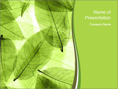 Transparent Leaves PowerPoint Template