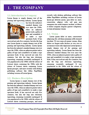 0000089844 Word Template - Page 3