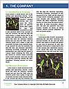 0000089846 Word Template - Page 3