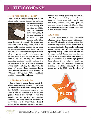 0000089851 Word Template - Page 3