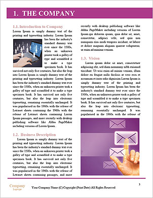 0000089852 Word Template - Page 3