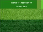 Grass field PowerPoint Template
