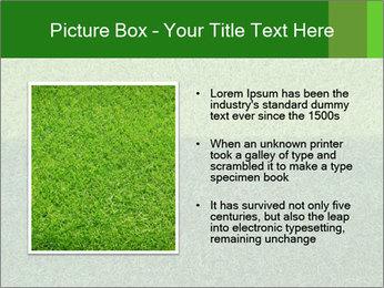 Grass field PowerPoint Template - Slide 13