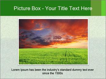 Grass field PowerPoint Template - Slide 16