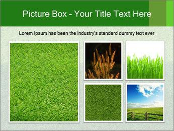 Grass field PowerPoint Template - Slide 19
