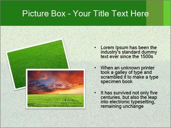 Grass field PowerPoint Template - Slide 20