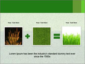 Grass field PowerPoint Template - Slide 22