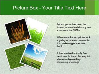 Grass field PowerPoint Template - Slide 23