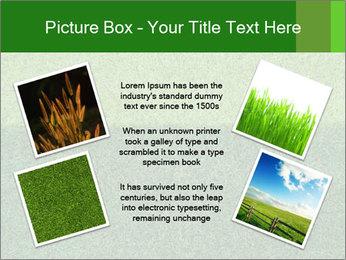 Grass field PowerPoint Template - Slide 24