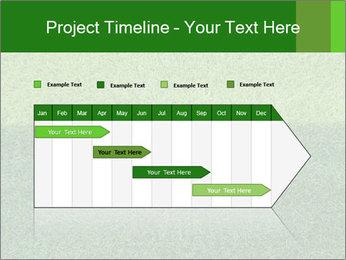 Grass field PowerPoint Template - Slide 25