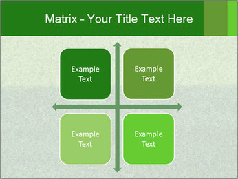 Grass field PowerPoint Template - Slide 37
