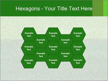 Grass field PowerPoint Template - Slide 44