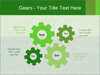 Grass field PowerPoint Template - Slide 47